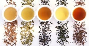 différentes variétés de thés bio hecosfair premium